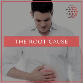 Blog - Root Cause