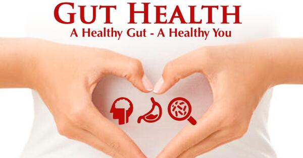Gut health, probiotics
